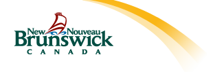 Governement of New Brunswick icon