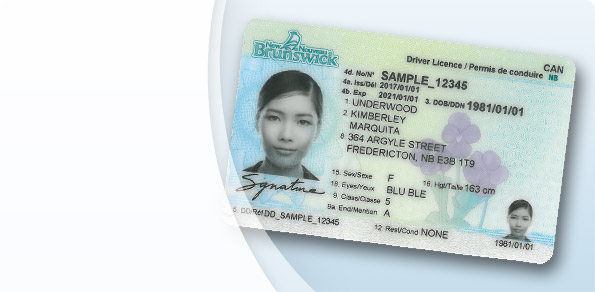 Your New Brunswick driver's licence and photo ID is about to change!