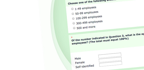 Employer Survey – Pay Equity