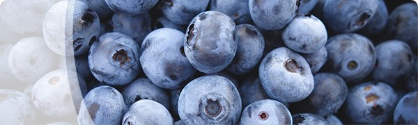 Promo-Blueberries