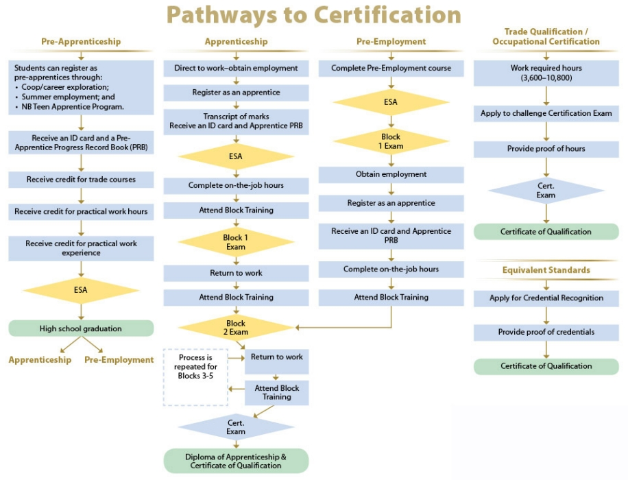 Pathways to cerfification - apprentices