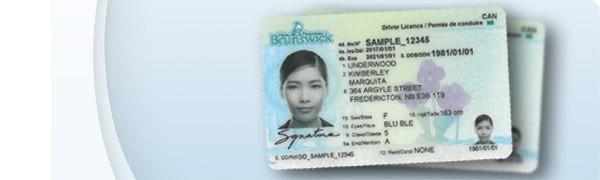 licence_category